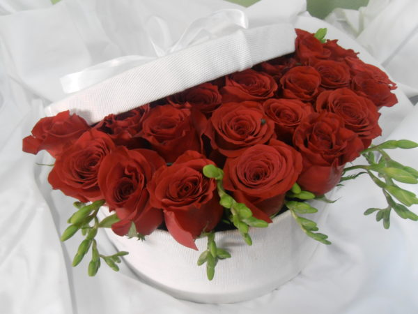 Sorpresa - Caja de 12 + 1 rosas rojas