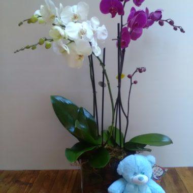 Cristal decorado con orquídeas
